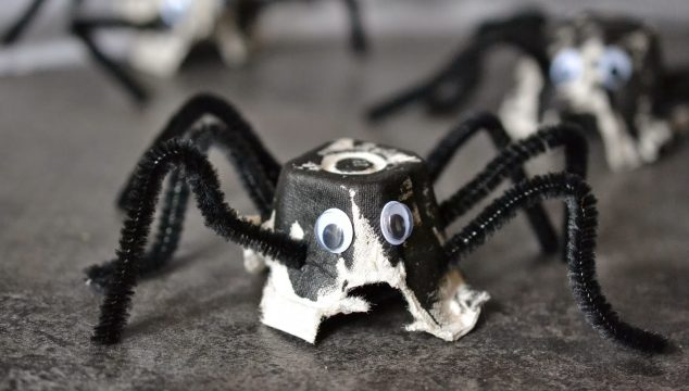 Egg Carton Spider Kids Craft Idea